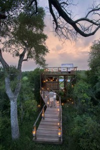 The Tinyeleti Treehouse in the Kruger National Park