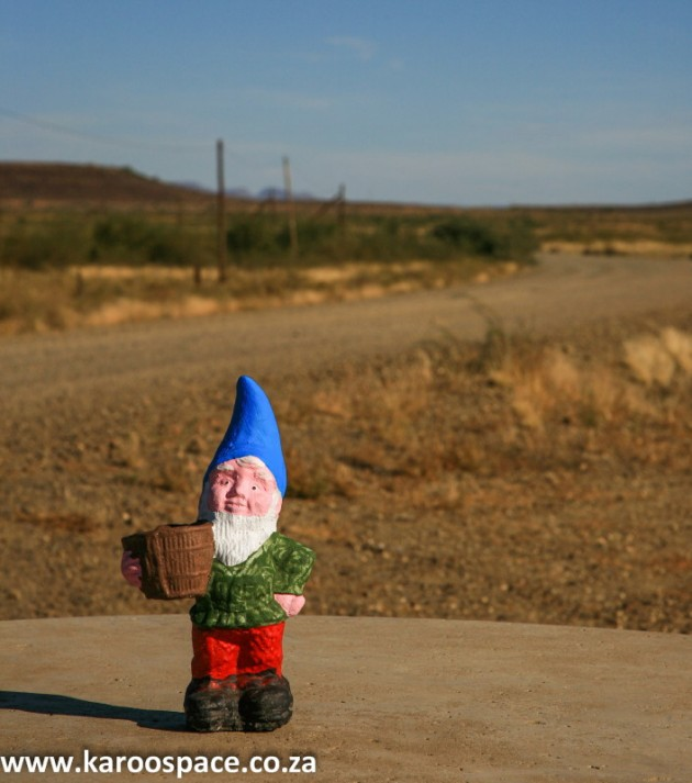 Lonely gnome: Pudding Face Pictures: Chris Marais