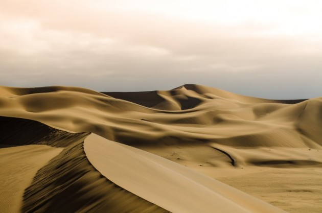 This photograph of the Namib Desert was taken in the late afternoon in the vicinity of the well-known Dune 7 near Walvis Bay.