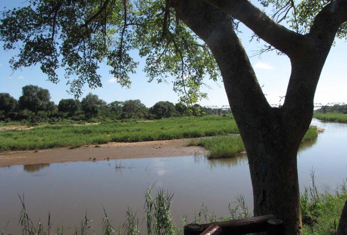 River view at Skukuza